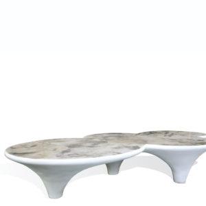 Chromosome Coffee Table - SM
